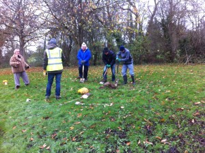 Bulb Planting on Loughton 2