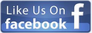 new like us on fb logo